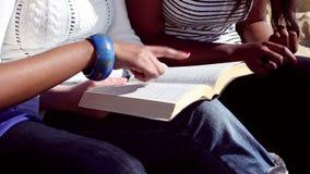 Amigos que leen la biblia en la playa almacen de video