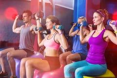 Amigos que llevan a cabo pesas de gimnasia mientras que se sienta en bola de la aptitud Fotografía de archivo