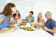 Amigos que se relajan en el país almorzando Fotografía de archivo libre de regalías