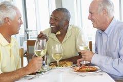 Amigos que têm o almoço em um restaurante Fotografia de Stock Royalty Free