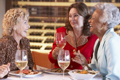 Amigos que têm o jantar junto em um restaurante imagem de stock