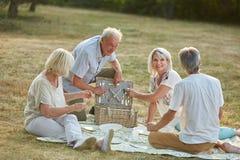 Amigos que têm um piquenique junto no parque no verão Foto de Stock Royalty Free