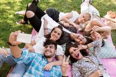 Amigos que toman el selfie por smartphone en la comida campestre Imagen de archivo