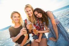 Amigos que tuestan en la playa foto de archivo libre de regalías