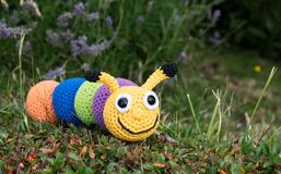 Amigurumi caterpillar multicolor stock image