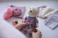 Amigurumi zabawka TeddyBear Obrazy Stock