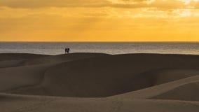 Amily está andando por dunas de areia Fotos de Stock