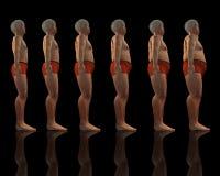 Amincissez au mâle de poids excessif illustration libre de droits
