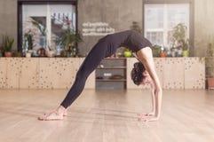Amincissez la jeune femme flexible faisant l'exercice de yoga se tenant en position de pont dans un gymnase Image libre de droits