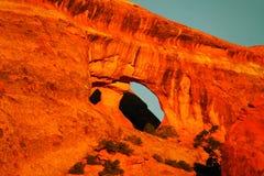 Amincit dans le désert Photos stock