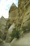 Amincit dans le désert Image libre de droits