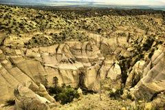 Amincit dans le désert Images libres de droits