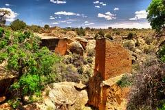 Amincit dans le désert Photos libres de droits