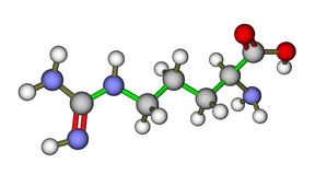 Amino acid arginine molecule Royalty Free Stock Image