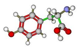 Amino acid tyrosine molecular structure Stock Images
