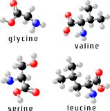Amino acids. Set of four essential amino acids Royalty Free Stock Photo