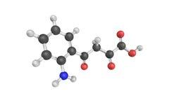 4 (2-aminophenyl) - 2,4-dioxobutanoate, un produit d'un produit chimique au sujet de Photos libres de droits