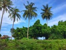 Amir Beach immagini stock libere da diritti