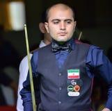 Amir Sarkhosh de l'Iran Images stock