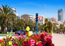 Amiral July Guillen Tato d'avenue dans Alicante Images stock