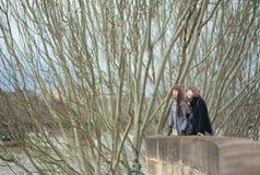 Amis à Paris, restant sur un pont Images stock