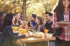 Amis à un barbecue riant de la table, femme dans le premier plan Images libres de droits