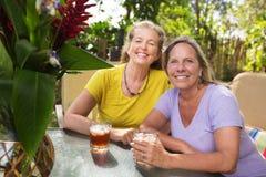 Amis âgés par milieu heureux Images libres de droits