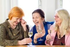 Amis adultes heureux détendant avec des verres de vin Photos libres de droits