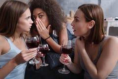 Amis agréables buvant le vin et le bavardage Photos stock