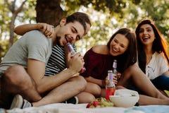 Amis appréciant des boissons au pique-nique Image stock
