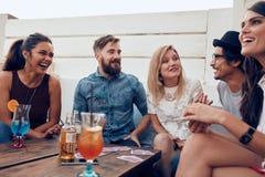 Amis appréciant des boissons pendant la partie de dessus de toit Photo libre de droits