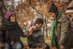 Amis appréciant l'automne au parc Photo libre de droits