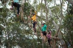 Amis appréciant la ligne aventure de fermeture éclair en parc Image libre de droits
