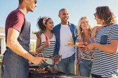 Amis appréciant le barbecue de déjeuner Images stock