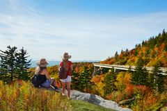 Amis appréciant le beau Mountain View de chute Image stock