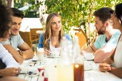 Amis appréciant le dîner extérieur Image stock