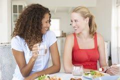 Amis appréciant le repas ensemble Photos stock