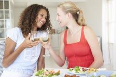 Amis appréciant le repas ensemble Images stock