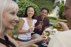 Amis appréciant le vin ensemble Photo stock