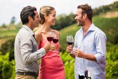 Amis appréciant le vin rouge Images libres de droits