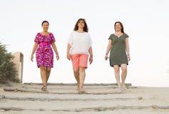 Amis appréciant sur la plage Photographie stock libre de droits