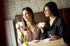Amis attirants de femmes causant en café pendant le coff Photographie stock libre de droits