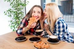 Amis au café Images libres de droits