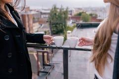 Amis au thé en air frais Photo libre de droits