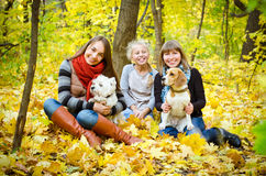 Amis avec des chiens image stock