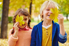 Amis avec des feuilles Photo stock