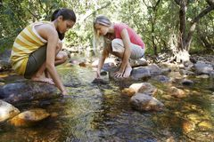 Amis avec des mains dans l'eau chez Forest Stream Photographie stock libre de droits