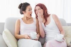 Amis avec des tasses de café bavardant dans le salon Images stock