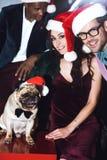 Amis avec le roquet dans des chapeaux de Santa Photo stock