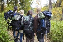Amis avec les sacs à dos et le Mats In Forest roulé Photo libre de droits